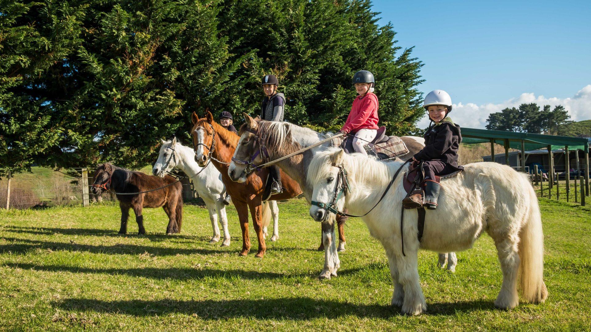 Te Horo Equestrian